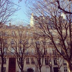 Parisian apartments in the winter. #classic #travel #blue #sky