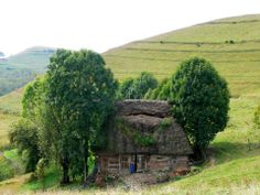 Fairy Hut in Apuseni Mountains