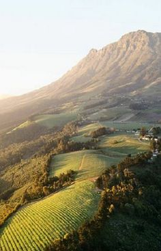 Stellenbosch wine farms - South Africa. South Africa has the longest wine route in the world. And I will go there! :)