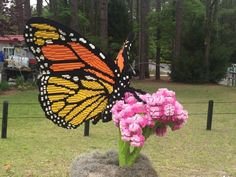 Photo of Brookgreen Gardens