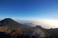 gunung pangrango - Google Search