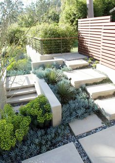 Well combination of succulent plants with stairs and hardscape in your backyard.