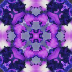 Purple Kaleidoscope Graphic.
