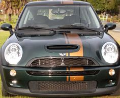 "Mini Cooper 8"" offset Rally racing stripe stripes decals decal - This stripe (in white) is Going on my mini!,"