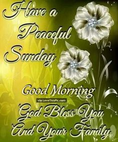 Have A Peaceful Sunday God Bless You And Your Family good morning sunday sunday quotes good morning quotes happy sunday sunday quote happy sunday quotes good morning sunday beautiful sunday quotes sunday quotes for friends and family Blessed Sunday Morning, Sunday Wishes, Have A Blessed Sunday, Happy Sunday Quotes, Morning Greetings Quotes, Morning Blessings, Sunday Greetings, Good Morning Good Night, Good Morning Quotes