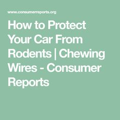 How to Protect Your Car From Rodents | Chewing Wires - Consumer Reports