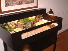 How to Set Up a Tortoise Table - Easy Setup Guide - Vivarium World Tortoise Terrarium, Tortoise Cage, Tortoise House, Tortoise Habitat, Turtle Habitat, Baby Tortoise, Sulcata Tortoise, Tortoise Turtle, Tortoise Vivarium