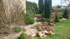 Relaxační den na zahradě