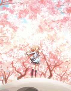 your lie in april gif