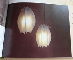 The tulip lamps I described earlier - from the book 'Eco Craft' - milk jugs and bamboo skewers! Already have the lamp cords (8.99, silver, World Market)