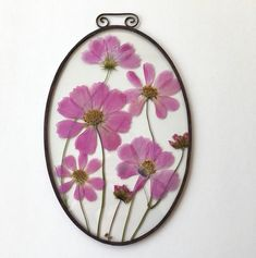 Rustic floral frame;Remarkable pressed Cosmos in oval floating frame; Unique romantic gift for her;Stain glass home decor vintage design by CuteLilThingsRu on Etsy