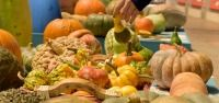 Endangered pumpkins and squash from Slow Food's Ark of Taste in Turin 2014