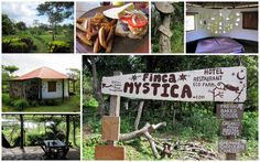 Finca Mystica, Ometepe, Nicaragua. We really wished we had stayed here but they had no room when we scootered over. Excellent menu and lush, tropical surrounds close to the lake. Book before you go!