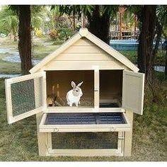 Huntington Townhouse Rabbit Hutches