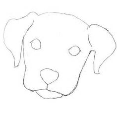 how to draw a dog face super easy - Yahoo Search Results Yahoo Image Search Resu. - Dog Face - how to draw a dog face super easy – Yahoo Search Results Yahoo Image Search Results - Dog Face Drawing, Dog Drawing Simple, Cute Dog Drawing, Cute Drawings, Drawing Sketches, Drawing Faces, Easy Simple Drawings, Puppy Drawings, Easy Animal Drawings