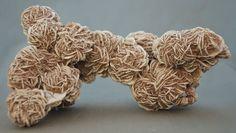 Selenite Desert Rose, Samalayuca, Chihuahua, Mexico 1 lb 13 oz Specimen