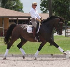 Dressage Trainer Sues for Alleged Non-Payment of $177K Commission   Rate My Horse PRO - Korean Grand Prix rider Dong Seon Kim may have found his future Olympic mount, but a lawsuit filed Tuesday claims Kim never paid his agent her $177,000 commission.