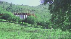 Clos Apalta Winery - Opened by Lapostolle in 1994. #TasteChile