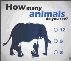 Pongamos a prueba tu mente. ¿Cuántos animales puedes encontrar en esta foto? #MindTest