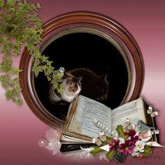 csodaszép,csodaszép,virág,cica,szeretet,álom szép ,csodaszép ,pillangó,csodaszép,virágok, - valeria68 Blogja - Zsuzsanna Bocsányi -tól kapot,Barátnőimtől!Kaptam!!,Csodás virágaim !,HÚSVÉT,Köszönöm képek!!!,Mozgó képeim !,szép estét,Szép idézetes képeslapok !,Szép női képek és szép gyermek,Szép romantikus képek!,Szép téli képek !,