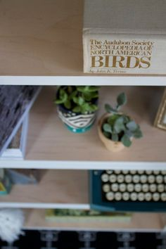 Bookshelf by Hurd & Honey