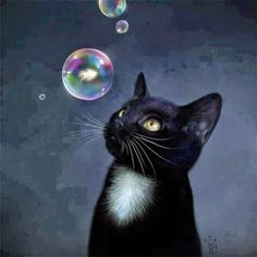 kedi çizimleri ile ilgili görsel sonucu
