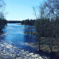 Tornionjoki