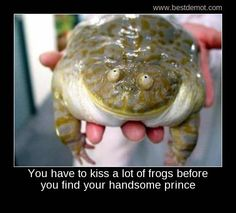 You have to kiss a lot of ugly toads before you find your handsome prince!