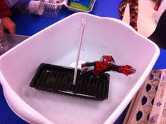 Primary French Immersion Resources - Grade 2 science - properties of liquids of solids, making boats that float! Grade 2 Science, Spanish Teaching Resources, French Immersion, Science Ideas, Boats, English, Blog, Ships, Blogging