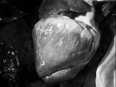 Marcel Duchamp and Maya Deren, Witch's Cradle, 1943 (Part 1) - artforum.com / video