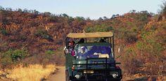 Game-viewing at the Pilanesberg Game Reserve.