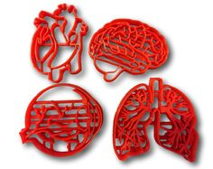 """If you have a custom shape or logos in mind please contact us for your unique custom orders.This listing is for Human Tissue Anatomy Cookie Cutter (Set of 4). Great size to make cookies for any fun occasions. The depth are about 1/2"""" deep enough to make thick size cookies.All cookie cutters are made printed by a quality high resolution 70 microns 3D printer at the time of order.Most cookie cutters will probably be blue but color may vary.This item is not dishwasher safe, hand wash only…"""
