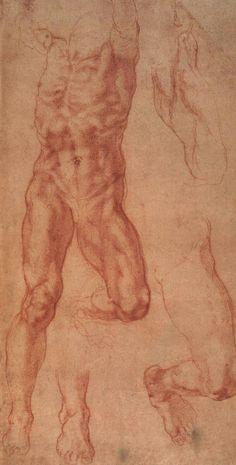Michelangelo Study for Haman Date: Rome, Italy Style: High Renaissance Media: chalk, paper Location: British Museum, London, UK Anatomy Sketches, Anatomy Drawing, Drawing Sketches, Gesture Drawing, Life Drawing, Painting & Drawing, Cave Painting, Italy Painting, Anatomy Study