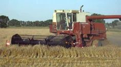 international harvester combine - YouTube