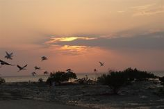 Ibo Island Lodge Gallery | Sunsets and Views Mozambique