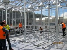 Plant growth and storage area in a glasshouse, Under construction.