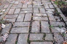 old-brick-sidewalk Paver Stone Patio, Paver Stones, Brick Sidewalk, Old Bricks, Backyard, Brick Driveway, Patio, Paving Stones, Exposed Brick