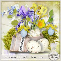 Commercial Use 30::04/03 - Wonderful Wednesday::Memory Scraps {CU}