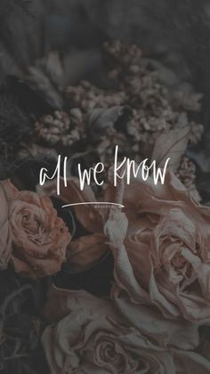 60 best Ideas for wallpaper iphone quotes songs chainsmokers Wallpaper Iphone Quotes Songs, Iphone 5s Wallpaper, Words Wallpaper, Phone Backgrounds, Wallpaper Backgrounds, Hd Quotes, Lyric Quotes, Best Quotes, Inspirational Quotes