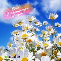Hoje começa oficialmente a estação das flores! A primavera!
