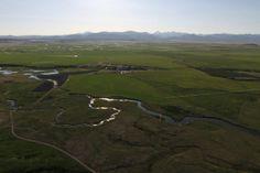 McCoy Spring Creek Ranch, Dillon, MT - Montana Ranches For Sale | Fay Ranches. http://fayranches.com/ranches-for-sale/montana/dillon-mt-flyfishing-mccoy-spring-creek