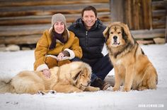 Family and Dog Portraits in Jackson Hole Wyoming