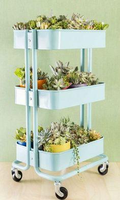 bricolage de jardin tag re porte plantes en vieil escabeau bo tes jardinage fleur et pots. Black Bedroom Furniture Sets. Home Design Ideas