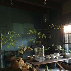 STARDUST. Beautiful Things & Vegetarian Cafe in Kyoto .