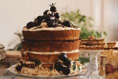 Rip+Tan Layer Cake