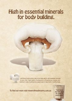 Australian Mushroom Growers Association - High in essential minerals for body building #ad