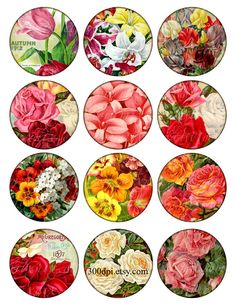 2.5 inch circles printable download digital collage sheet vintage images garden flowers roses round magnet label hang gift tag card no.258B