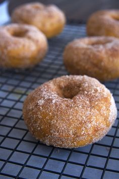 Baked Pumpkin Doughnuts- used flax egg and they were easy and yummy! Made about 10 donuts. Baked Pumpkin, Pumpkin Recipes, Fall Recipes, Sweet Recipes, Keto Recipes, Gluten Free Pumpkin Cookies, Gluten Free Sweets, Just Desserts, Delicious Desserts