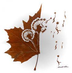 Omid Asadi.Une feuille d'arbre peut devenir une vraie oeuvre d'art