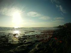 Beautiful Ocean view in shelly beach sydney Australia